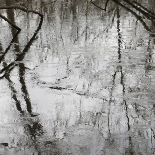 ripples-on-the-pond
